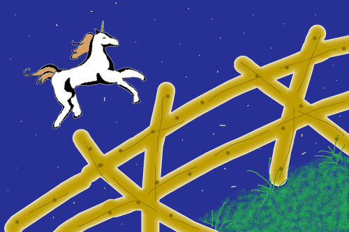 Unicorn and fence