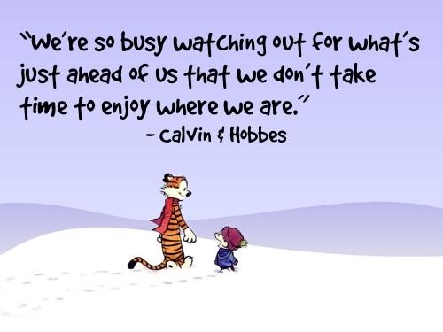 hobbes_mindfulness
